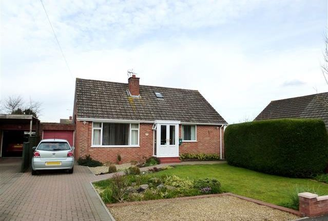 Thumbnail Bungalow to rent in Newlands Crescent, Ruishton, Taunton