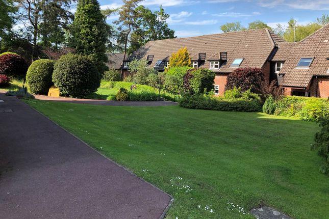 Thumbnail Semi-detached bungalow for sale in Rougham Road, Bury St. Edmunds