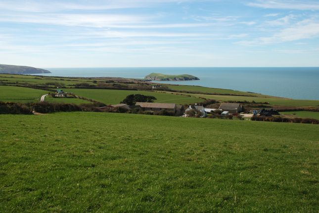 Thumbnail Farm for sale in Cardigan, West Wales