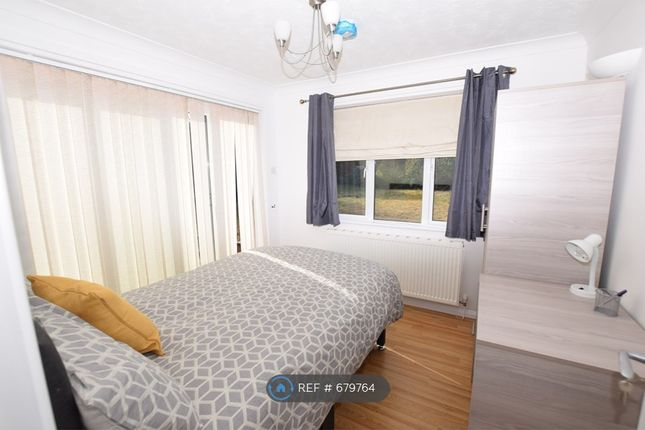 Thumbnail Semi-detached house to rent in Goldfinch Close, Colchester