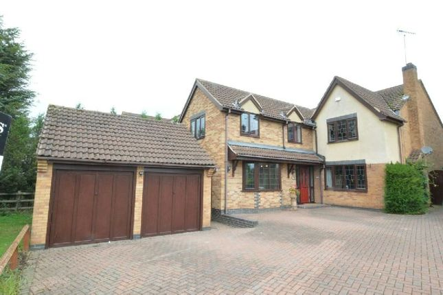 Thumbnail Detached house for sale in Bodicoat Close, Whetstone, Leicester