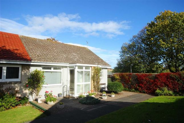 Thumbnail Bungalow for sale in 3, Pitcruvie Park, Lundin Links, Fife