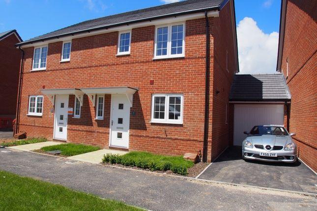 Thumbnail Property to rent in Upperton Grove, Littlehampton