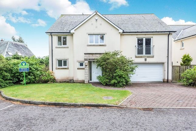 Thumbnail Detached house for sale in Tayview Road, Liff, Dundee