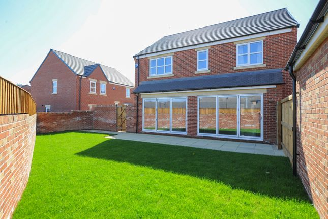 Thumbnail Detached house for sale in 22 Hunters Walk, Chesterfield