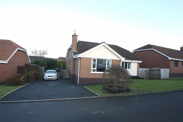 Thumbnail Detached bungalow for sale in Clanwilliams Court, Ballynahinch, Down