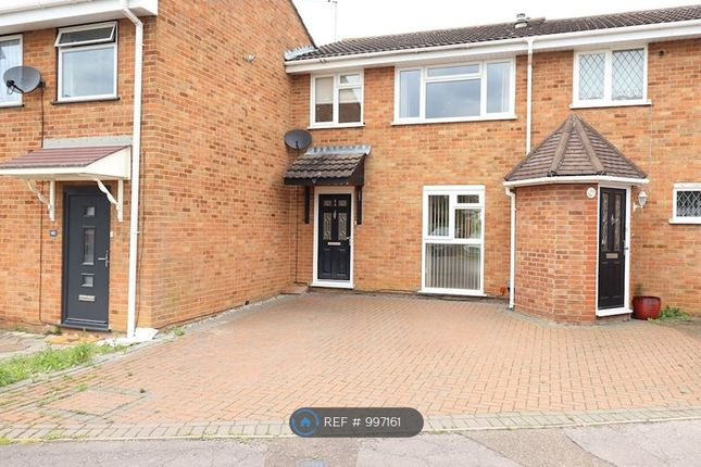 3 bed terraced house to rent in Daffodil Way, Chelmsford CM1
