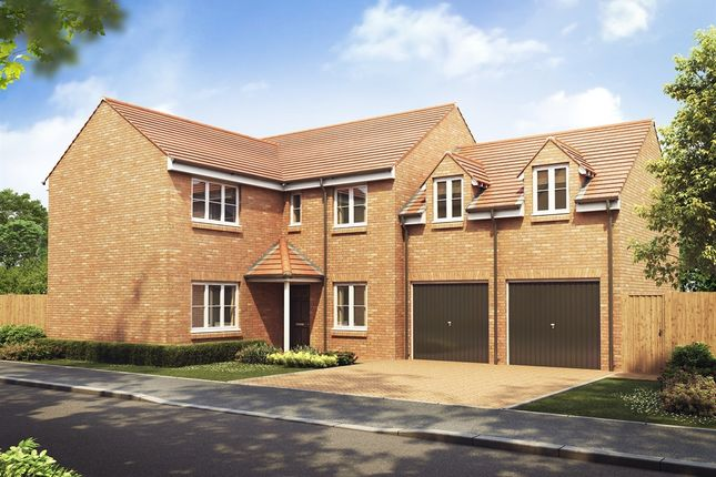 """Thumbnail Detached house for sale in """"The Oxford """" at Appleford Road, Sutton Courtenay, Abingdon"""