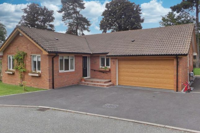 Thumbnail Detached bungalow for sale in The Paddock, Willaston, Cheshire