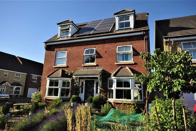 Thumbnail Detached house for sale in Regency Close, Stonehouse