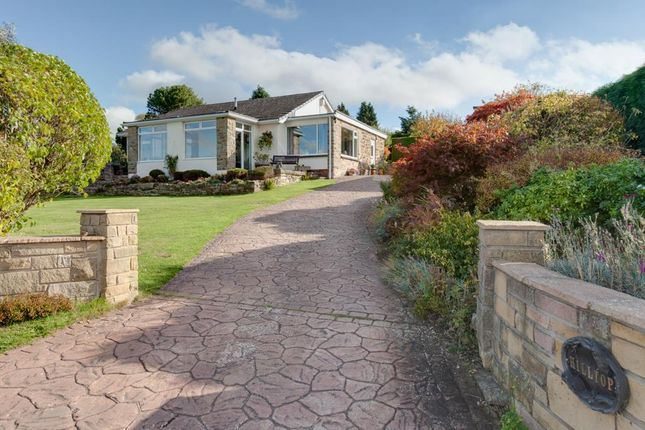 Thumbnail Property for sale in Hilltop, Main Road, Hundall, Dronfield