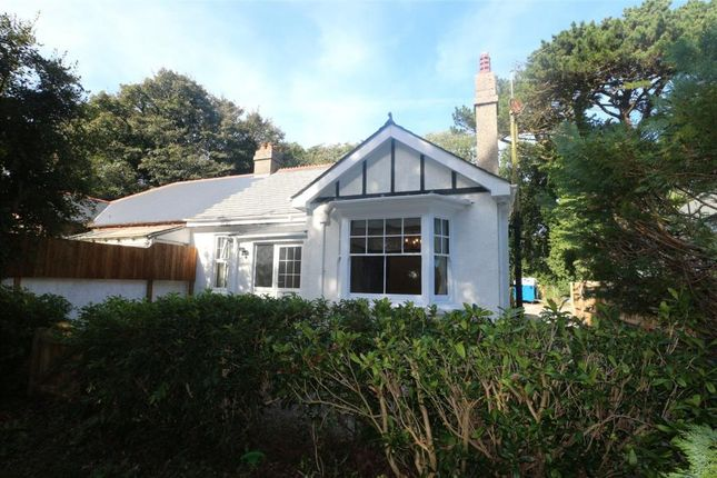 Thumbnail Semi-detached bungalow for sale in South Drive, Tehidy, Cornwall