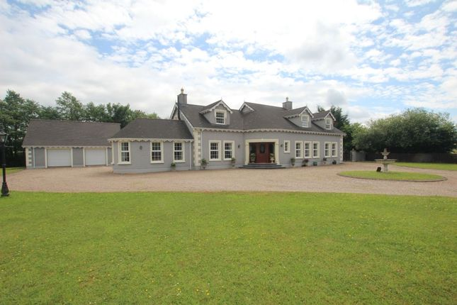 Thumbnail Detached house for sale in Lenagh Road, Randalstown, Antrim