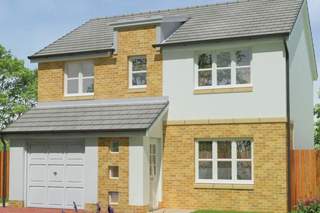 Thumbnail Detached house for sale in Rosebank Development, Dunipace, Falkirk