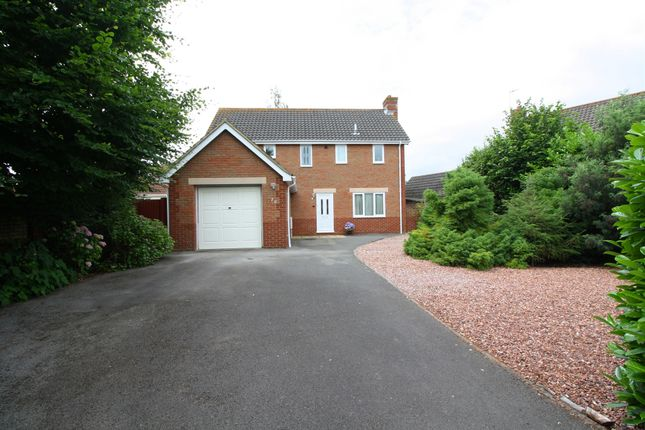 Thumbnail Detached house for sale in Harp Chase, Taunton