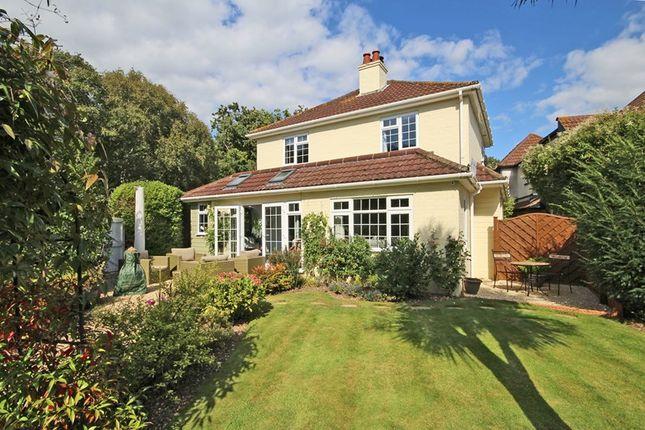 Thumbnail Detached house for sale in Barton Common Lane, Barton On Sea, New Milton