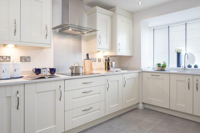 "Thumbnail Terraced house for sale in ""Borthwick"" at Prestongrange, Prestonpans"