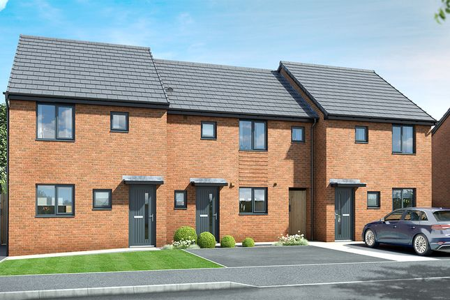 "Thumbnail 3 bed property for sale in ""The Melbury"" at Hawthorn Avenue, Hull"