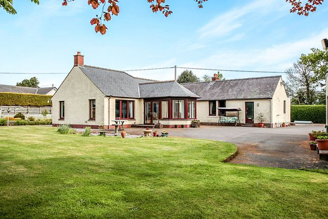 Thumbnail Bungalow for sale in Hardthorn Road, Dumfries