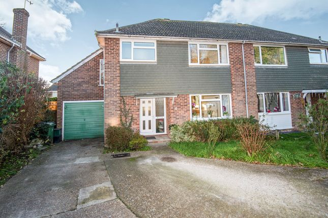 Thumbnail Semi-detached house for sale in Camber Close, Bexhill-On-Sea