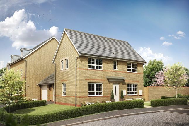 Thumbnail Semi-detached house for sale in Chalkers Rise, Pelham Rise, Peacehaven