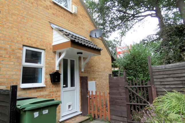 Thumbnail Semi-detached house to rent in Arbourvale, St Leonards On Sea