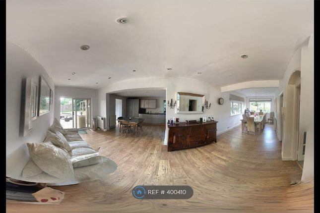 Thumbnail Detached house to rent in Birch Grove, Welwyn