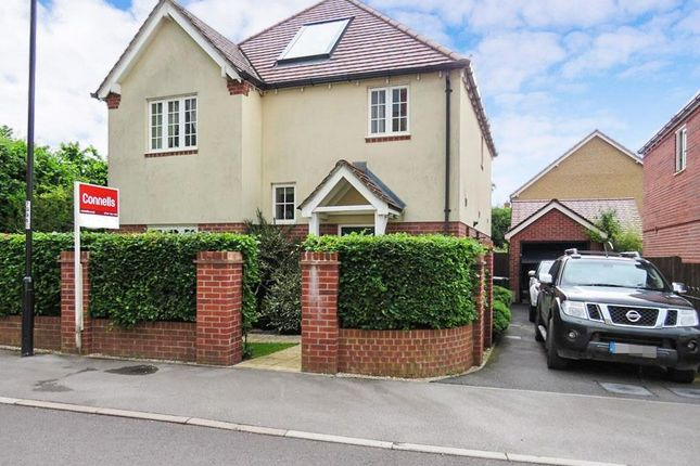 Thumbnail Detached house to rent in Gower Road, Shaftesbury