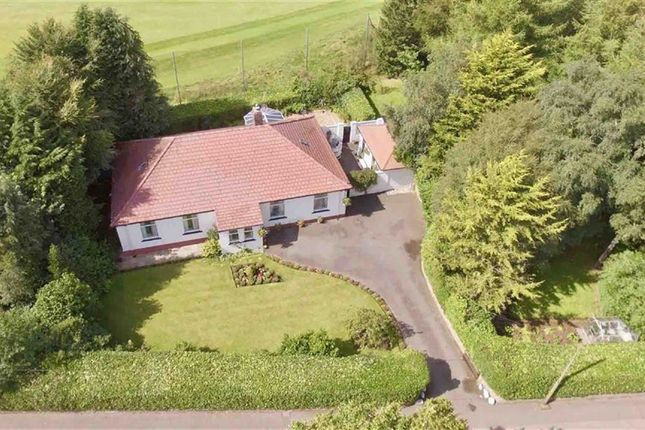 Thumbnail Detached bungalow for sale in Dalbeattie Road, Dumfries
