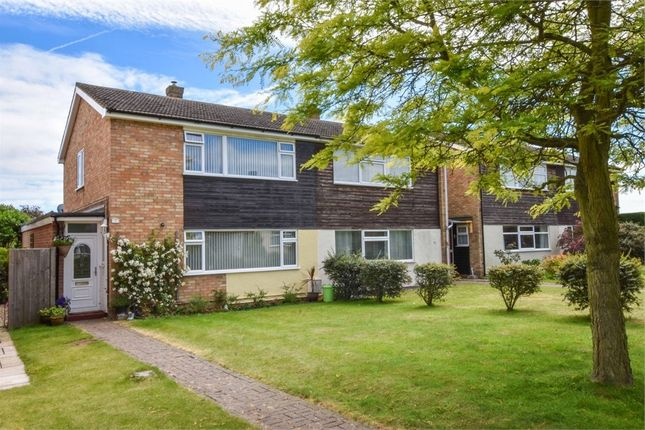 Thumbnail Semi-detached house for sale in Elm Close, Great Bentley, Colchester, Essex