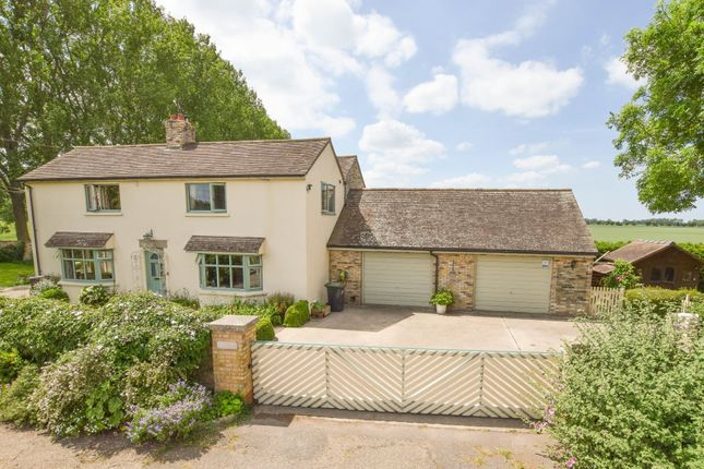 Thumbnail Detached house for sale in Little London, Isleham, Ely