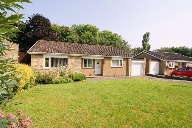 Thumbnail Bungalow to rent in The Paddock, Walbottle, Newcastle Upon Tyne