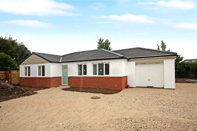 Thumbnail Detached bungalow for sale in Berrylands, Crossways, Dorchester