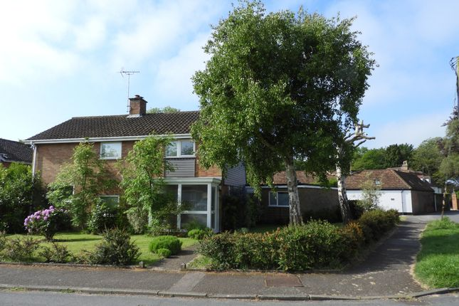 Thumbnail Detached house for sale in Chaplin Road, East Bergholt, Colchester
