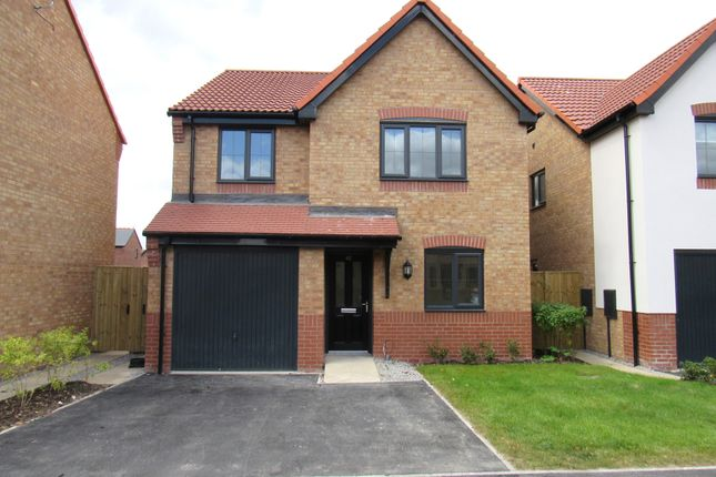Thumbnail Detached house for sale in Riley Way, Hull