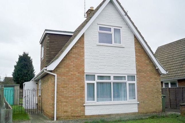 Thumbnail Detached bungalow to rent in Priory Road, West Town, Peterborough