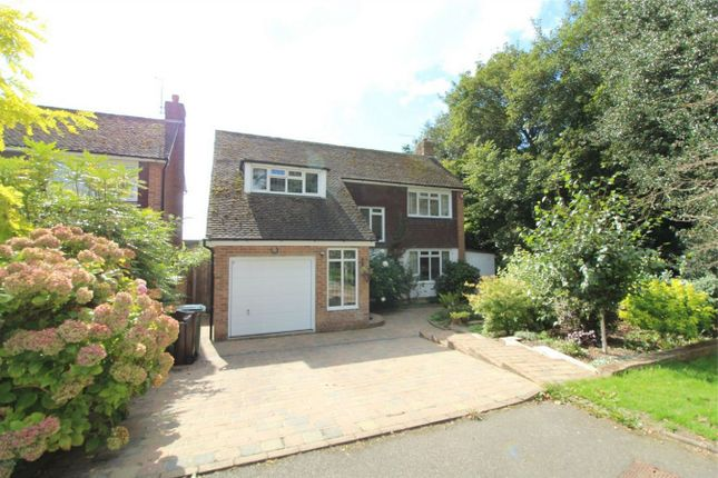 Thumbnail Detached house for sale in Shipley Lane, Bexhill On Sea, East Sussex