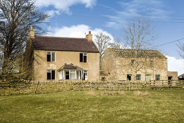 Thumbnail Farmhouse for sale in Low Sunniside, Catton, Hexham, Northumberland