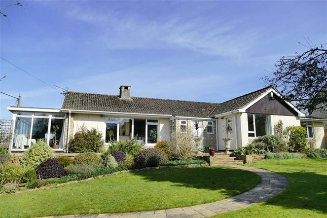 Thumbnail Detached bungalow for sale in Studley Hill, Studley, Calne