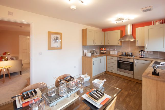 "3 bedroom detached house for sale in ""Kilkenny"" at Wheatriggs, Milfield, Wooler"