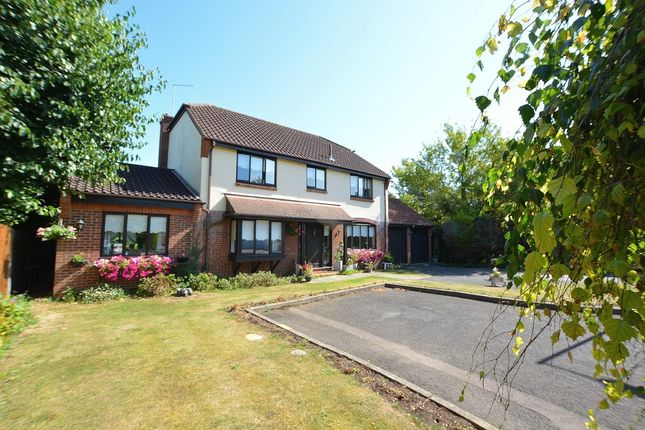 Thumbnail Detached house for sale in Wyldwood Close, Harlow, Essex