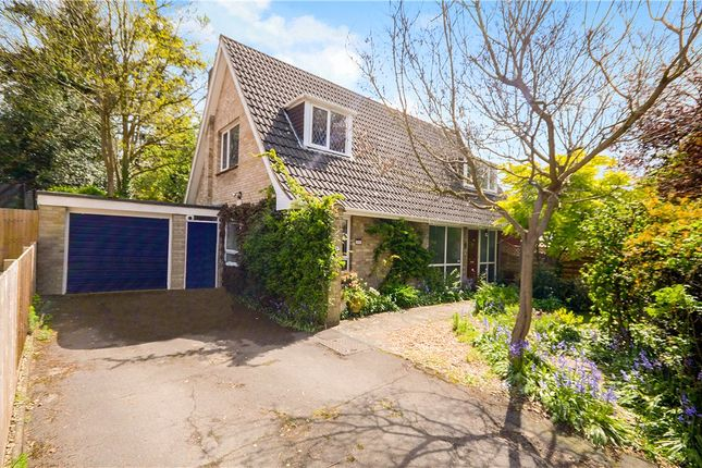 Thumbnail Detached bungalow for sale in Church Avenue, Farnborough, Hampshire