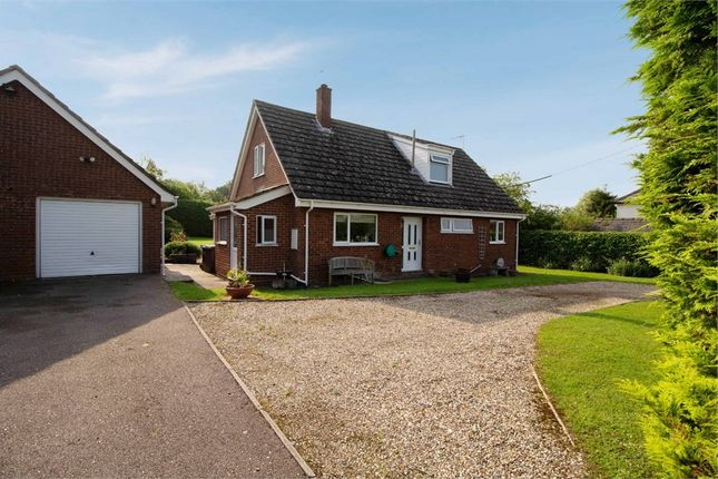 4 bed detached bungalow for sale in Bury Road, Wickham Street, Newmarket, Suffolk CB8