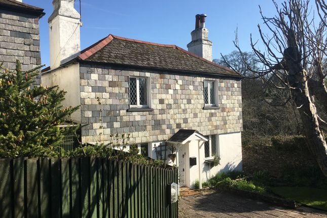 Thumbnail Cottage to rent in Village Road, Marldon
