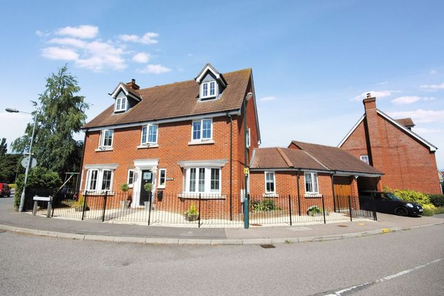 Thumbnail Detached house for sale in Wainwright Avenue, Braintree