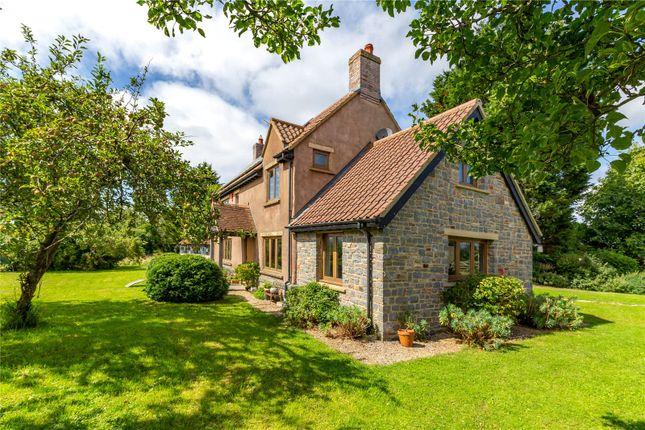 Thumbnail Land to rent in Lower Claverham, Claverham, Bristol