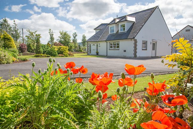 Thumbnail Detached house for sale in Beeswing, Dumfries