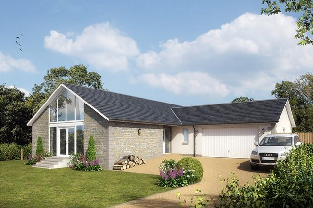 Thumbnail Bungalow for sale in Finavon, Forfar, Angus