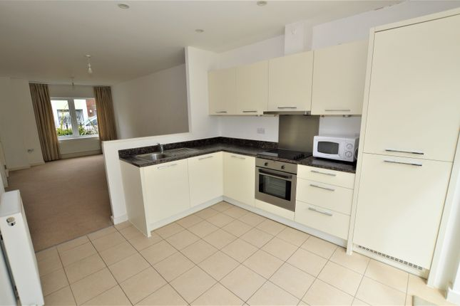 Thumbnail Terraced house to rent in Mccluskeys Street, Colchester
