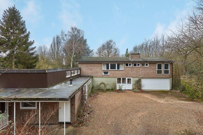 Thumbnail Detached house to rent in Trumpington Road, Trumpington, Cambridge